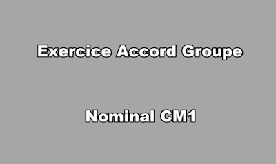 Exercice Accord Groupe Nominal CM1