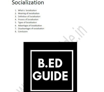 Socialization Notes Sample
