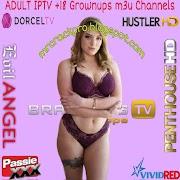 IPTV Channels ADULT Playlists m3u Updated 25/07/2021