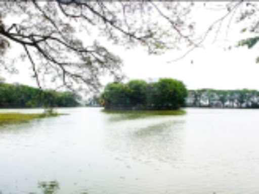 Danau Tasikardi, Sejarah Dan Fungsinya Di Masa Lalu
