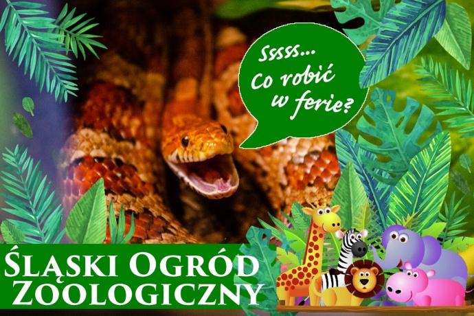 Poznajemy... Chorzowskie zoo zimą