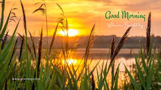 beautiful sunrise morning wishes images
