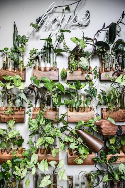"""Trong xu hướng thiết kế nội thất hiện nay, nhiều gia đình thường hướng đến việc thiết kế thêm """"không gian xanh"""" đã không còn quá xa lạ. Không chỉ thanh lọc cho không khí thêm trong lành, cây xanh còn khiến không gian sống của bạn trở nên tươi mát hơn bởi nguồn năng lượng thiên nhiên tinh khiết. Và nếu khéo léo bày trí cây cảnh, không gian sống của bạn sẽ vô cùng ấn tượng. Không những thế, trồng cây xanh trong nhà còn có ý nghĩa về mặt phong thủy, hút tài lộc cho gia chủ."""
