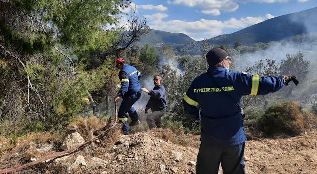 Αργολίδα: Κινητοποίηση πυροσβεστικής, Πολίτικης Προστασίας και εθελοντών για φωτιά στην Αρχαία Επίδαυρο