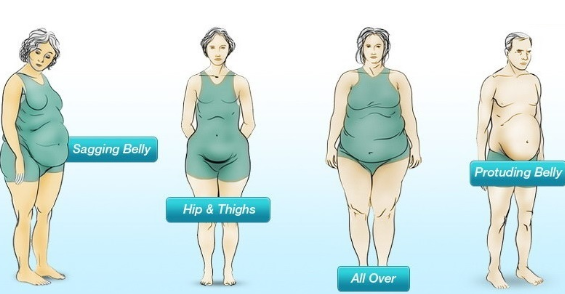 5 #Types Of #Belly #Fat And How #To Get Rid #Of Each #Of Them#Health