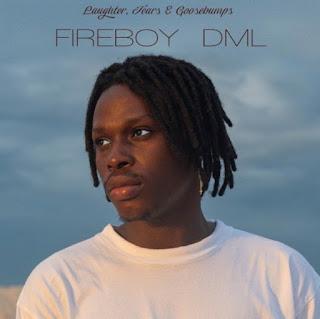 Fireboy DML – Laughter, Tears & Goosebumps Album