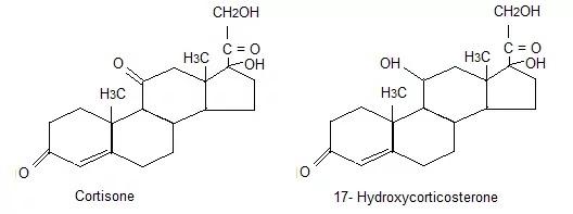 ADRENAL STEROIDS.