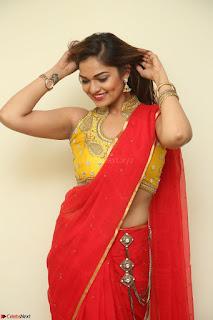Actress Ashwini in Golden choli Red saree Spicy Pics ~  045.JPG
