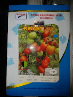 tomat kinanti, lmga agro, toko pertanian, online, jual benih tomat