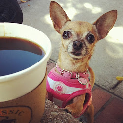 coffee w/ bailey