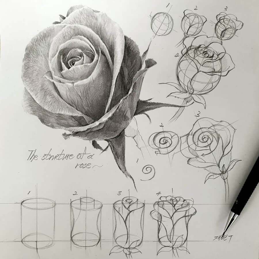 03-Rose-bud-anjjaemi-www-designstack-co
