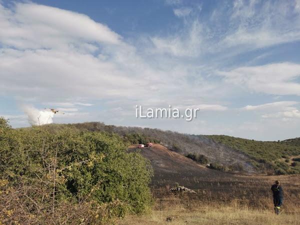 Φθιώτιδα: Φωτιά πάνω από το Λιμογάρδι- Σηκώθηκαν και τα PZL-Τέθηκε υπό έλεγχο (Φωτογραφίες)