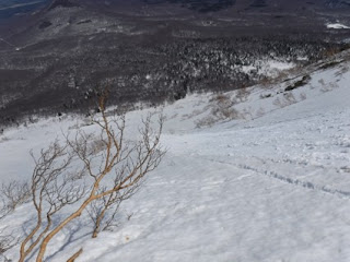 急斜面を滑っていく雪崩。