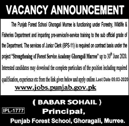 Jobs in Punjab Forest School, Ghoragali,Murree 2020