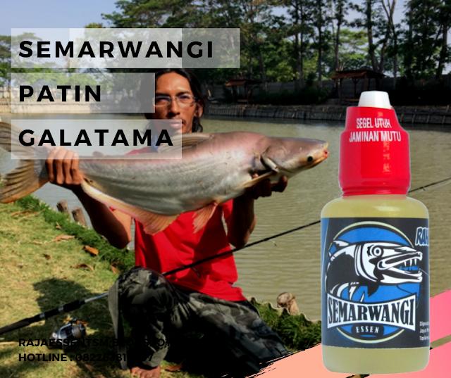 https://rajaessentsm.blogspot.com/2019/08/essen-semarwangi-ikan-patin-galatama.html