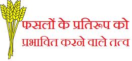 fasal-ke-pratiroop-ko-prabhavit-karne-wale-karak