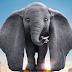 """Este es el nuevo póster de la película """"Dumbo"""""""