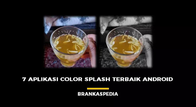 7 Aplikasi Color Splash Terbaik Android