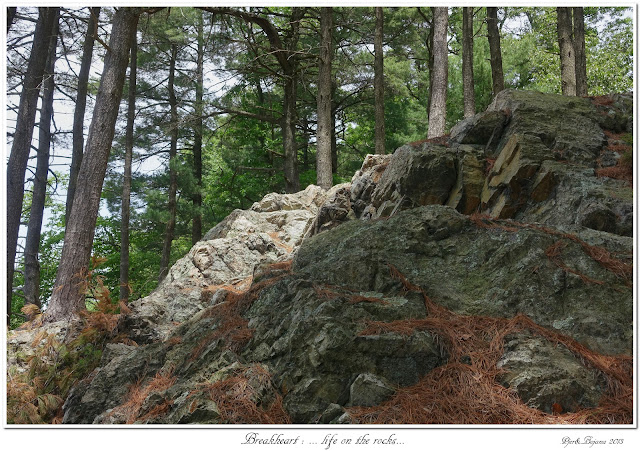 Breakheart: ... life on the rocks...