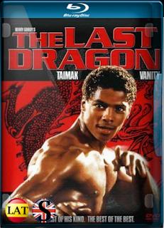 El Ultimo Dragón (1985) REMUX 1080P LATINO/ESPAÑOL/INGLES