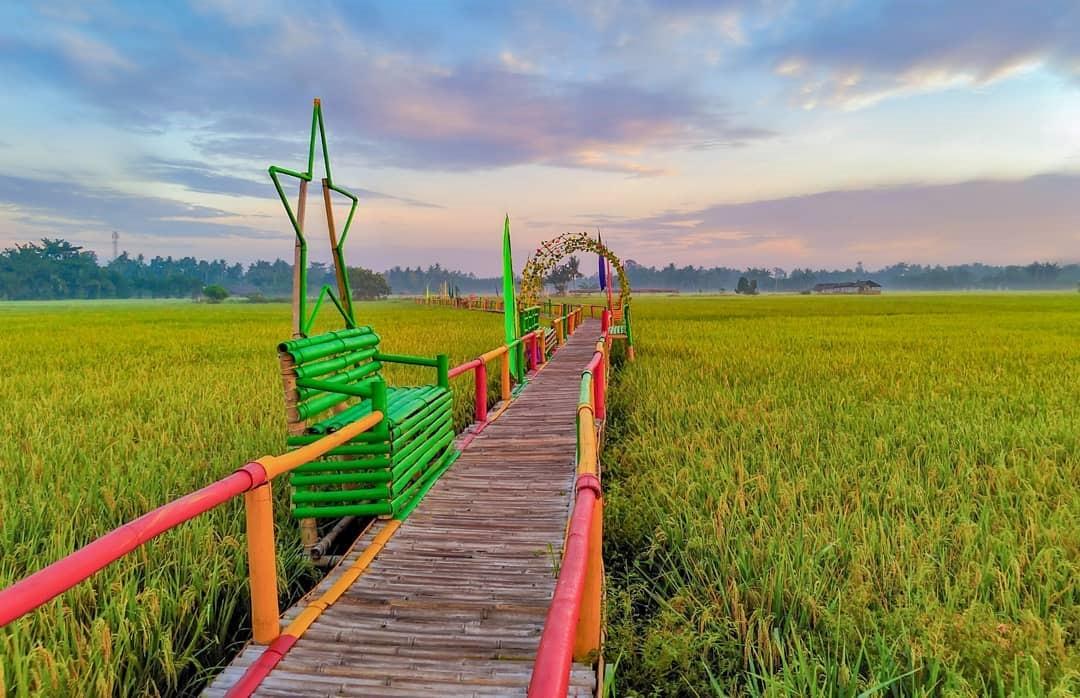 Pesona Desa Wisata Kampoeng Lama di Kawasan Agrowisata Paloh Naga, Sumatera Utara