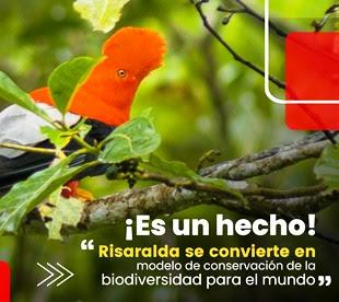Risaralda modelo de conservación de la biodiversidad para el mundo