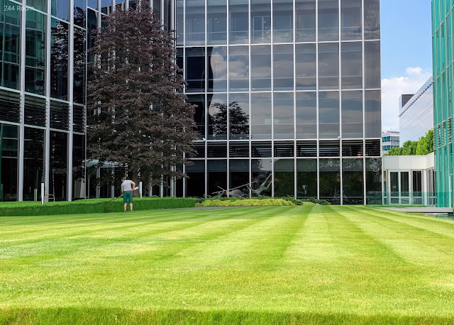 ROLEX World Headquarters3