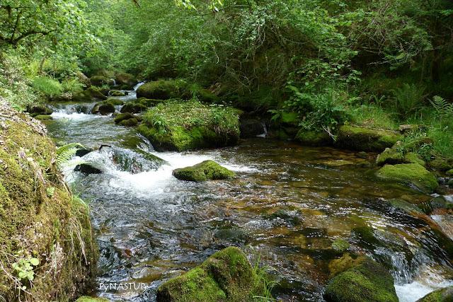 Río Infierno - Asturias
