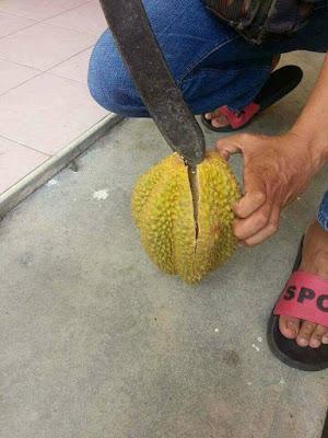 Curhatan Pria Saat Beli Durian Rp 15 Ribu Ini Viral, Saat Dibelah Isinya Bikin Nyesek