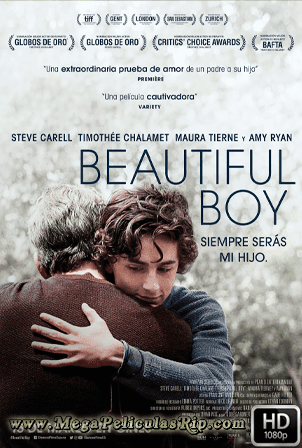 Beautiful Boy [1080p] [Latino-Ingles] [MEGA]