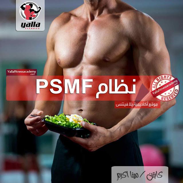 كل ما تحتاج معرفته عن نظام PSMF