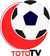 Toto TV İndir Apk