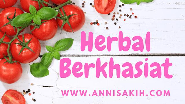 Cara pengobatan dan pencegahan penyakit secara alami dengan tanaman herbal tomat, jeruk nipis, lidah buaya, bawang putih dan jahe.