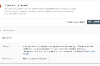 Domain terkena Hukuman Oleh Google