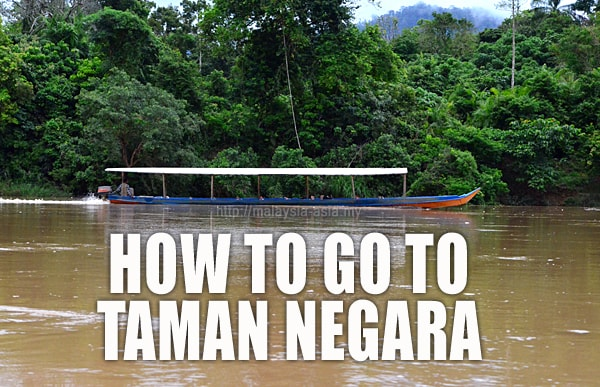 How to go to Taman Negara National Park