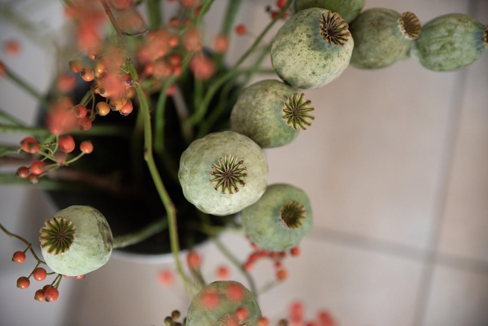 Herbstdeko mit Mohnkapseln Hagebutten Deko mit Naturmaterialien