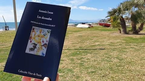 «Los desnudos», de Antonio Lucas (Visor)