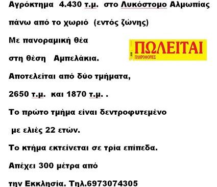 ΠΛ61021
