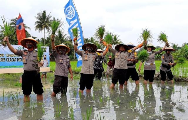 MANTAP !!! Polres Cilacap Tanam Padi dan Tebar Benih Ikan di Kedungreja