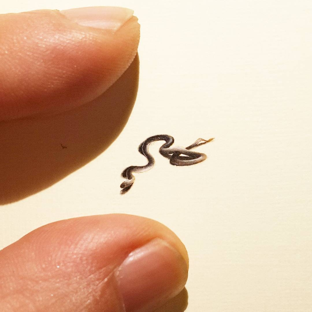 12-The-Tiniest-Snake-Hasan-Kale-Micro-Tiny-Paintings-with-Unusual-Canvases-www-designstack-co