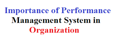 Importance of Performance Management System in Organization