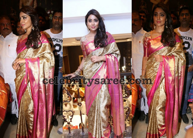 Shriya Saran VRK Silks Saree