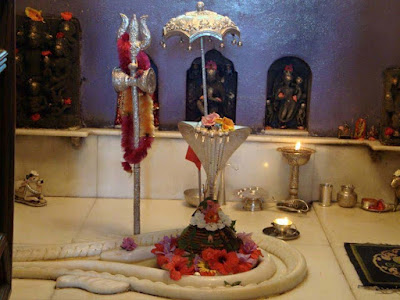 shivalaya-shivling-with-snake-photo