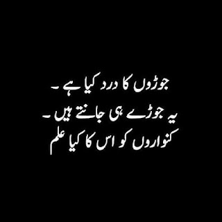 funny urdu quotes 02