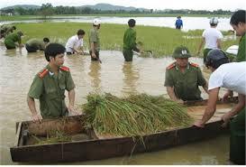 Hình ảnh chiến sĩ Công an nhân dân cứu lúa cùng dân