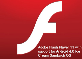 Prerequisite check failed for adobe flash player.
