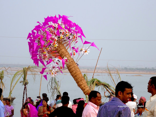 Chhath Puja 2016 - Dehri On Sone, Bihar (dehris.blogspot.in)