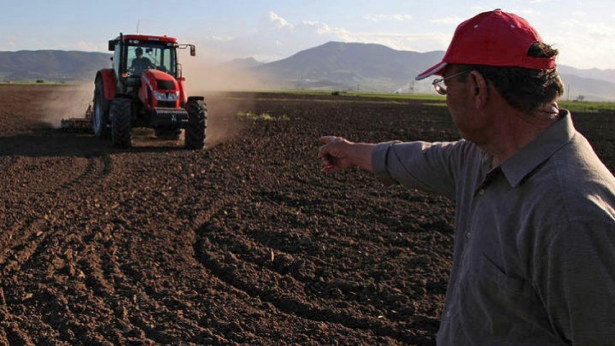 """Ξάνθη: Στα κάγκελα αγρότες και κτηνοτρόφοι για το """"ψαλίδισμα"""" στις ενισχύσεις"""