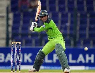 Shahid Afridi 4-14 - New Zealand vs Pakistan 3rd T20I 2010 Highlights