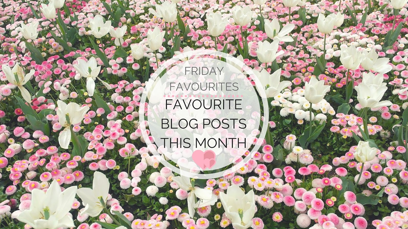 My Favourite Blog Posts This Month